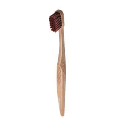 PLA Toothbrush manufacturer