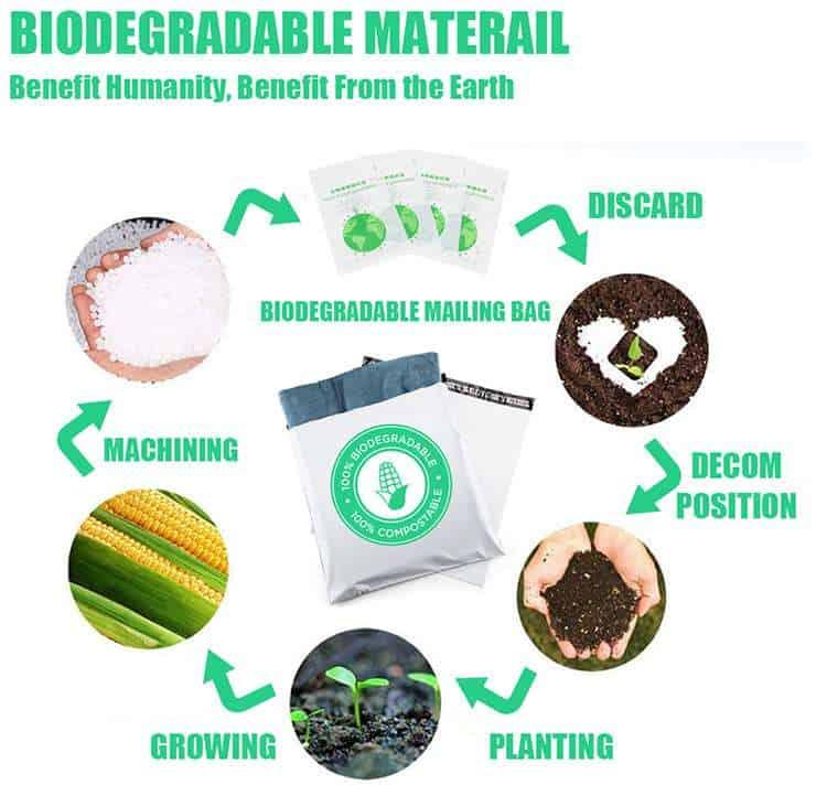 biodegradable padded envelopes factory
