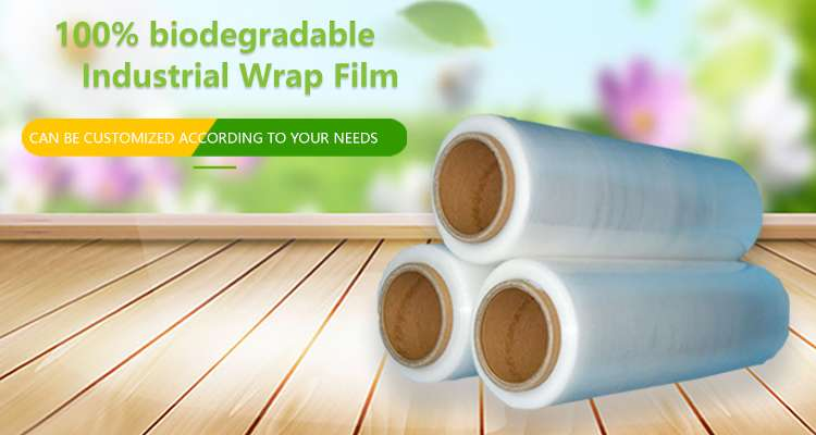 pla film suppliers in China